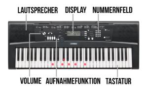 Das Keyboard und seine Bestandteile